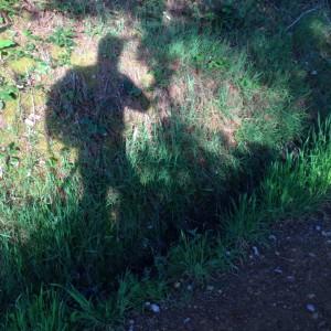 Kim Sagild går Caminoen